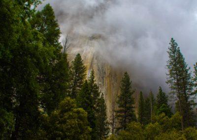 Yosemite N01